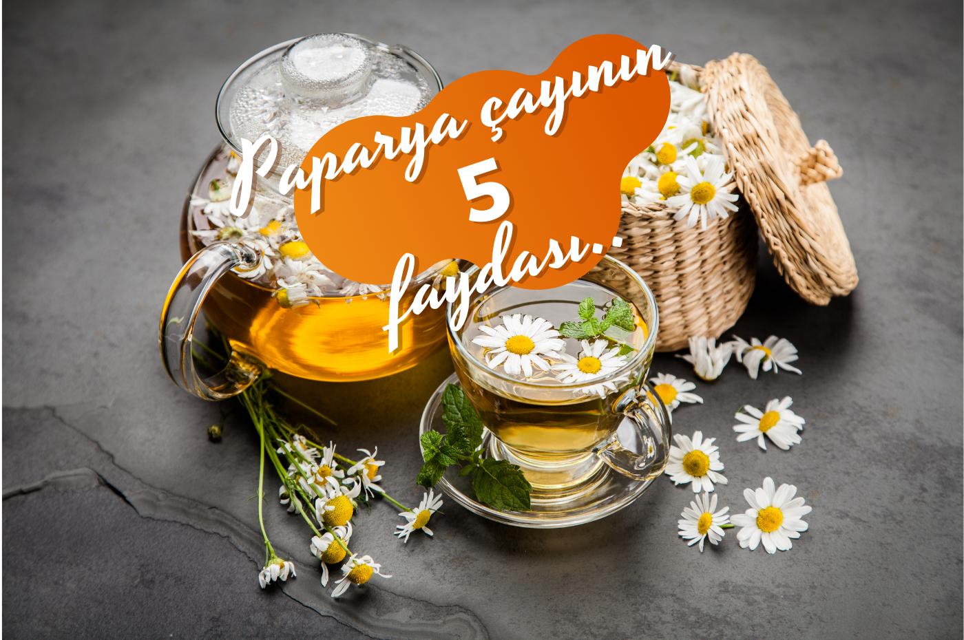 Papatya Çayının Sağlığınıza 5 faydası nelerdir? Papatya çatının faydaları